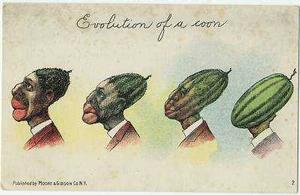 Nigger head watermelon