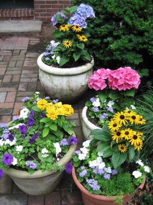 Bright spots of color fill the house and yard