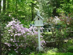 Birdhouse in Ringgold's back yard