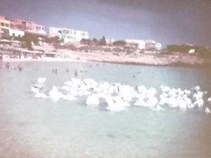 Migrants' sheet-covered bodies. Michele Wallace's photo of Lampedusa's photo