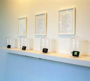 Fo Wilson with with Dayo Harewood, Sara's Lament, 2008 LCD monitors, bell jars, video (30 sec.), fictional diary entries