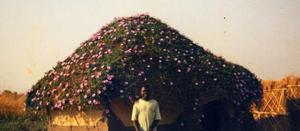 Zambian house roof covered with flowering plants and the happy designer. African Vernacular Architecture Database